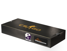 An un-opened DreamHack 2014 Cobblestone Souvenir Package