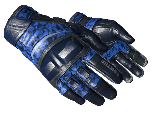 Moto Gloves | Polygon
