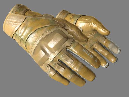 Moto Gloves | Transport