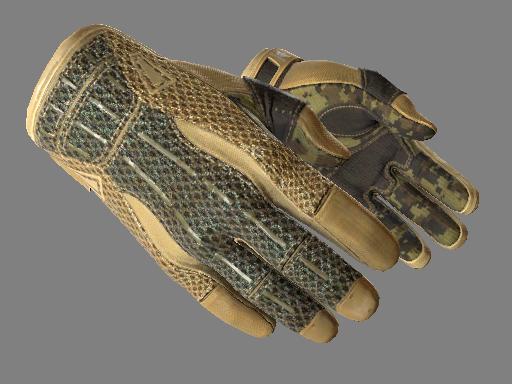 Sport Gloves | Arid