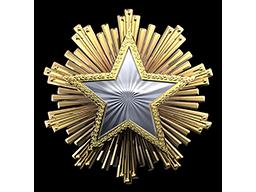 2016 Service Medal