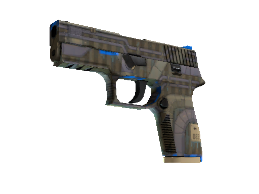 P250 Exchanger