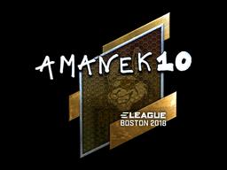 Sticker | AmaNEk (Foil) | Boston 2018