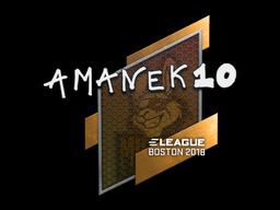 Sticker | AmaNEk | Boston 2018