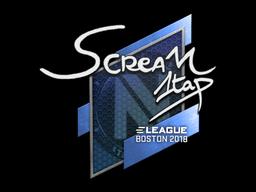 Sticker | ScreaM | Boston 2018