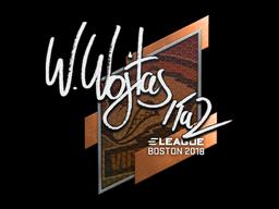 Sticker   TaZ   Boston 2018