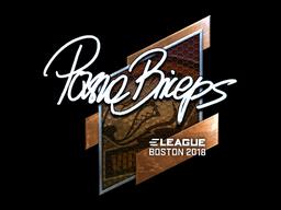 Sticker | pashaBiceps (Foil) | Boston 2018