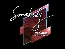 Sticker | somebody (Foil) | Boston 2018