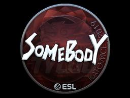 Sticker | somebody (Foil) | Katowice 2019