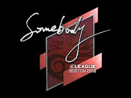 Sticker | somebody | Boston 2018